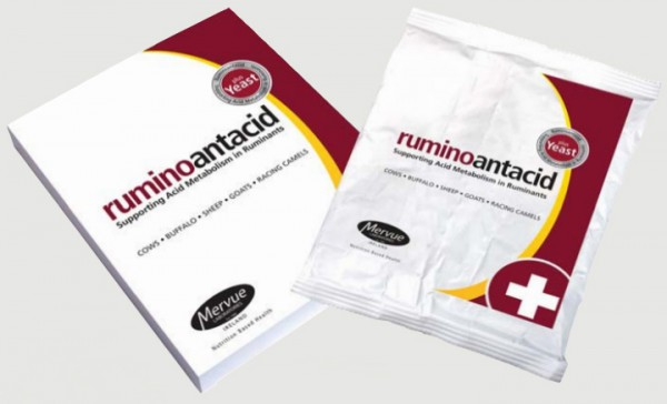 Ruminoantacid - nach Pansenacidose